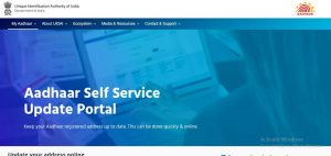 self serive update portal